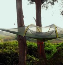 Carpas Voladoras (Tent-Sile)
